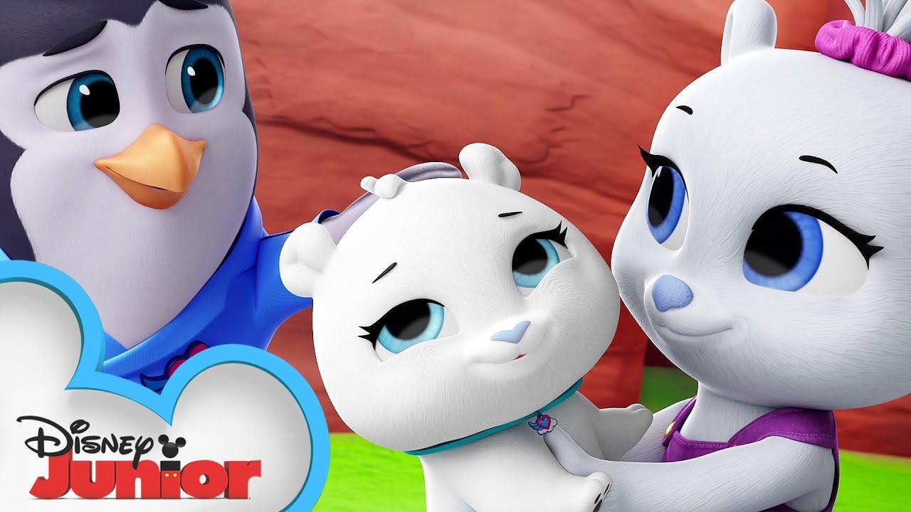 Download Oh Polar Brother Where Art Thou? 🐻 | National Polar Bear Day | T.O.T.S. | Disney Junior