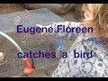 Eugene Floreen catches a bird (2017)
