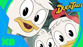 DuckTales | Meet Huey, Dewey and Louie | Official Disney XD UK