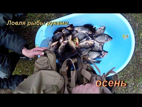 пенсионеров которых как поймать рыбу руками сне больную, немощную