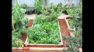 Raised bed gardening    raised bed gardening ideas