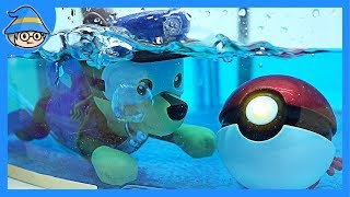 Paw Patrol swimming in the water. Stop the Pokemon ball.