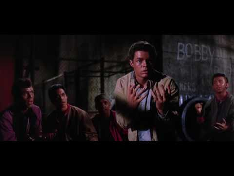 The Gangs fight (West Side Story)