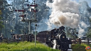 Climax Twilight Outing 2019 - Puffing Billy