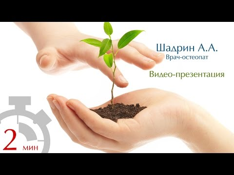 Остеопат в СПб цены -