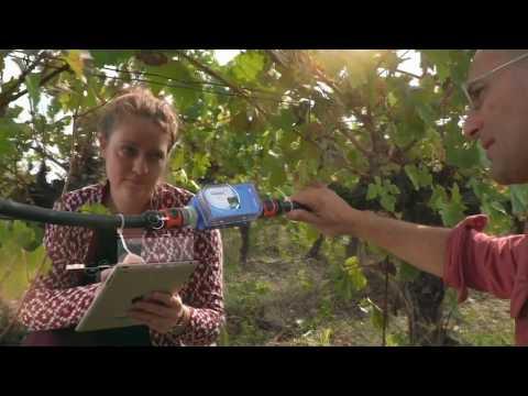 4TECH - جهاز يساعد المزارع على اتخاذ قرارات صائبة حول موعد ري المحصول وجودة التربة  - نشر قبل 4 ساعة