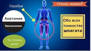Шпагат. Анатомия | От А до Я. Детям и взрослым!
