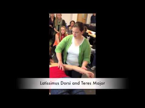 Manual Muscle Test for Latissimus Dorsi and Teres Major