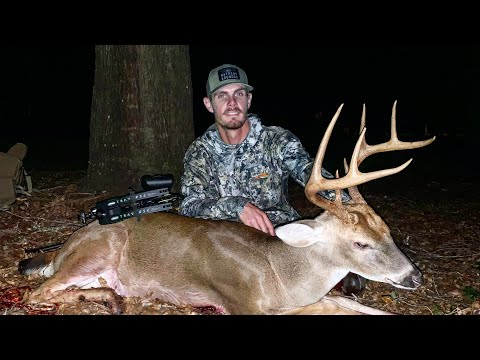 STUD 8 point shows up unexpectedly   BIG BUCK DOWN   South Carolina Deer Hunting 2020