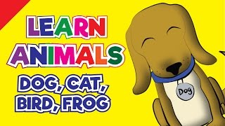 Learn Animals In English | I'm A Dog! | Dog, Cat, Frog, Bird | Kids, Toddlers & Kindergarten Song