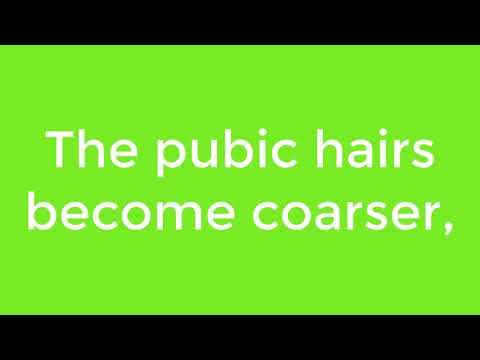 💕BACK TOO COOL FOR SCHOOL💕ПОКУПКИ В ШКОЛУ КРУТЫЕ ТЕТРАДКИ СУПЕРСКИЙ РЮКЗАК НА КОЛЁСИКАХ💕 from YouTube · Duration:  10 minutes 37 seconds
