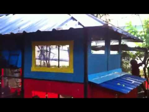Best chicken coop Kerala