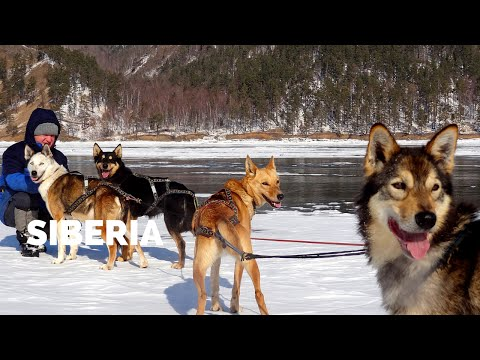 Dogsledding on Siberia's Lake Baikal