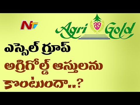Good News For AgriGold Victims | Essel Group Ready to Buy AgriGold Assets | NTV