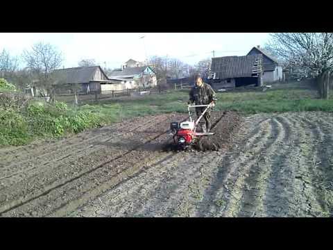 Мотоблок Shtenli 1100 | AgroTema by - YouTube