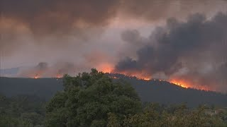 Португалия снова в огне (новости)