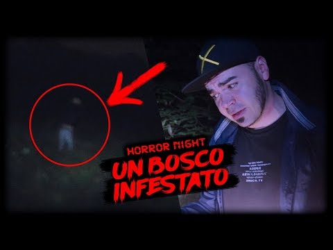TUTTA LA NOTTE IN UN BOSCO INFESTATO 💀 HORROR NIGHT