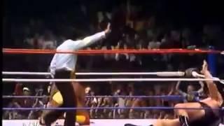 David & Goliath • Hulk Hogan Body Slams André the Giant