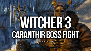 Witcher 3 Walkthrough Part 63 - On Thin Ice (Caranthir BOSS Fight)