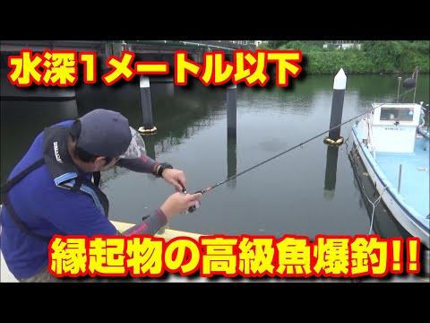 これから釣りを始める方へ!!超簡単仕掛けで爆釣!