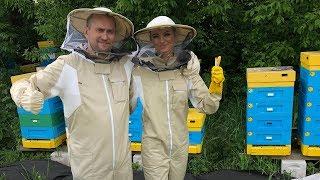 Pal Hajs TV - 67 - Z Kamerą Wśród Pszczół