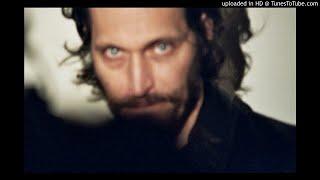 Vincent Gallo - No Regard
