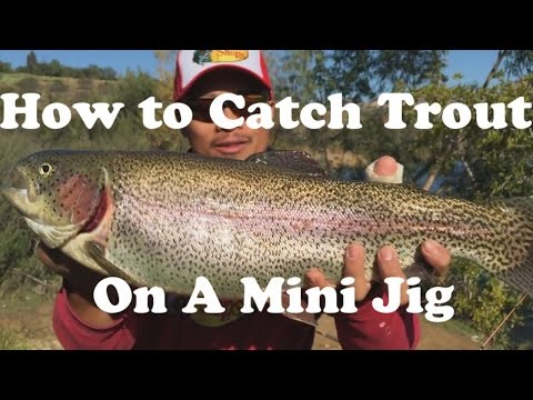 How To Catch Rainbow Trout Using A Mini Jig From Shore