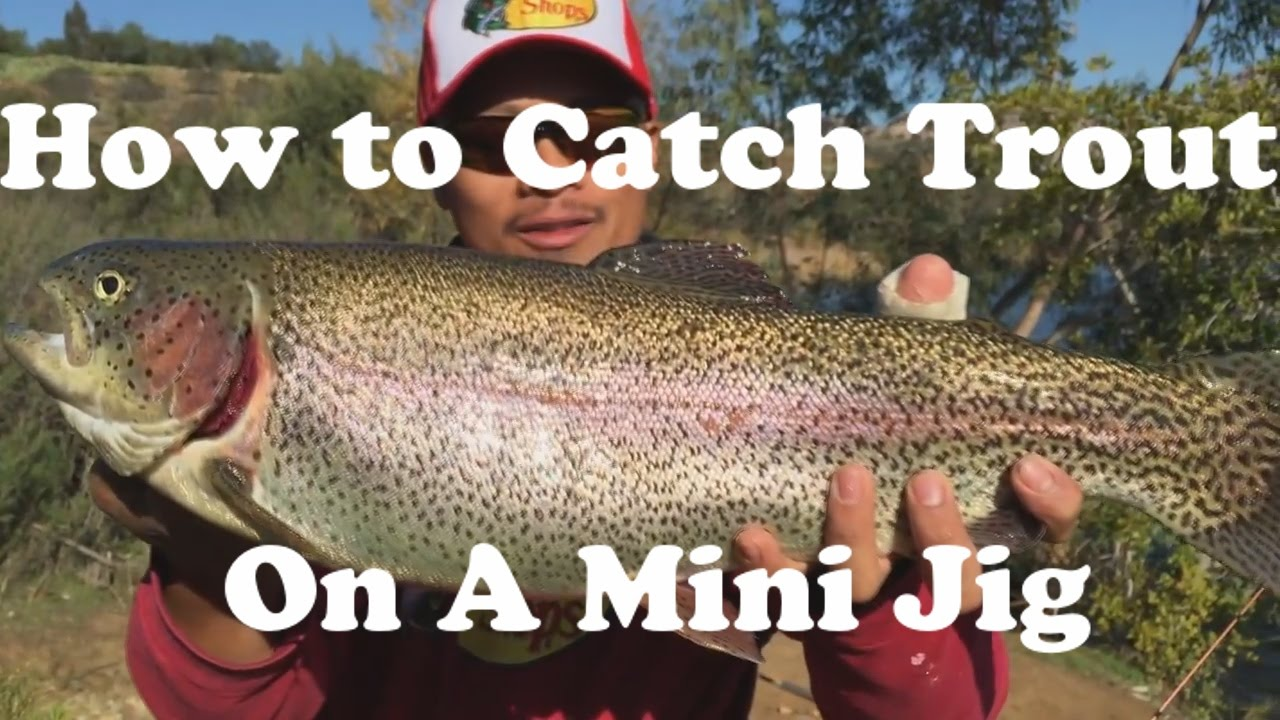 how to catch rainbow trout using a mini jig from shore - youtube, Fly Fishing Bait