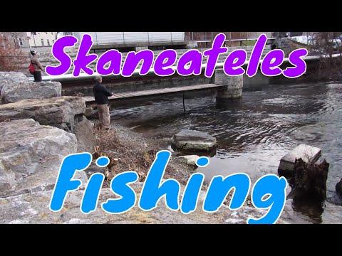 Skaneateles Fishing |  Surprising!!!