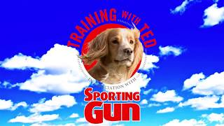 Gundog Training  'Training With Ted'   The Placeboard