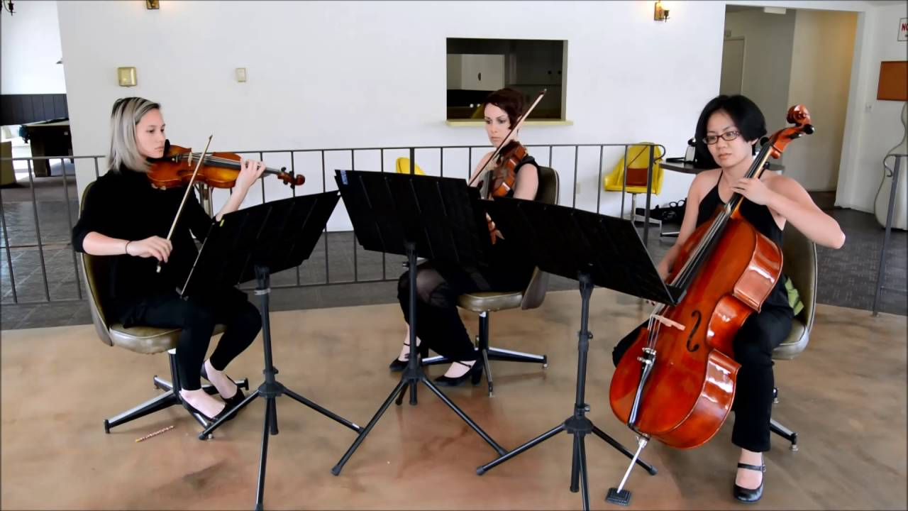Marry You Bruno Mars String Trio Cover By The Ocdamia Strings