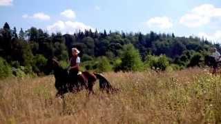 Avanti Horse - конные магазины