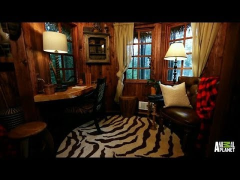 treehouse masters spa. Treehouse Masters Spa D