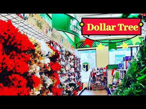 DOLLAR TREE * SHOP WITH ME NEW ITEMS!