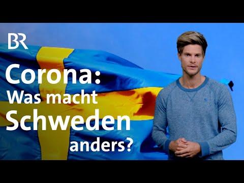 Corona: Ist Der Schwedische Weg Besser Gegen Covid-19? | Coronavirus | BR