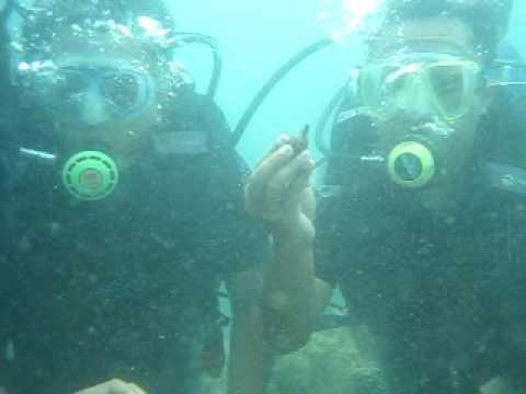 JISP Scuba Diving