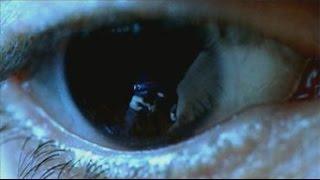Ojos de Cristal (Trailer)