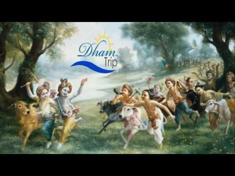 Mathura-Vrindavan tour with Dhamtrip