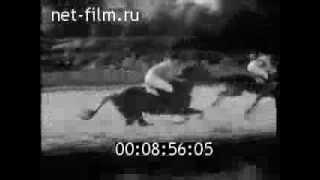 Чемпионат СССР по конному спорту, стипль-чез. ЦМИ 1974 год.