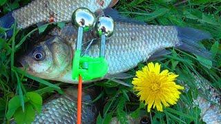 БЕШЕНЫЙ КЛЁВ КАРАСЯ НА ЗАКИДУШКИ Рыбалка на красивом пруду