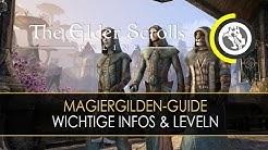 ESO - Magiergilden-Guide: Die wichtigsten Infos & effektives Leveln | HD