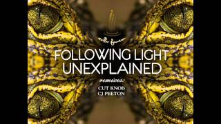 Following Light - Unexplained (Original Mix) - Stellar Fountain
