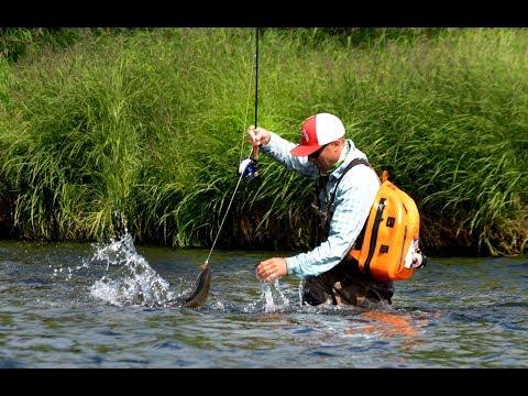 Mouse Fishing In Kamchatka, Russia Ozernaya River