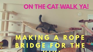 diy suspension bridge between cat trees