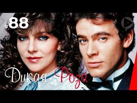 Дикая Роза (88 серия) (1987) сериал