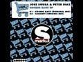Jose Sousa Peter Diaz Cosmic Race Original Mix mp3