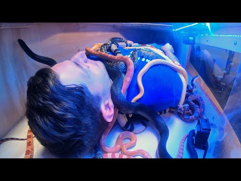 Laying in a Box of Snakes | Overtime 9 | Dude Perfect