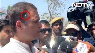 Laser Pointed At Rahul Gandhi, Security Breach, Congress Tells Government
