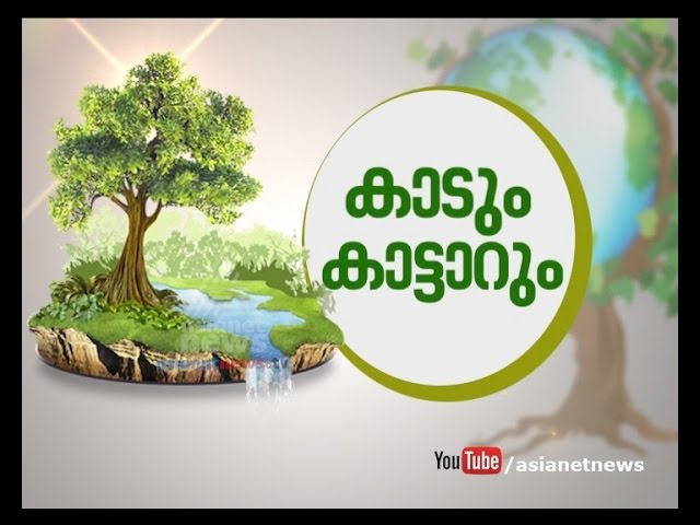 World Environment Day  special programme: Kaadum Kattarum | കാടും കാട്ടാറും | 5 June 2016