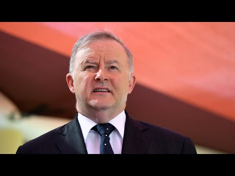 Democracy 'too important to be undermined by any individual': Albanese